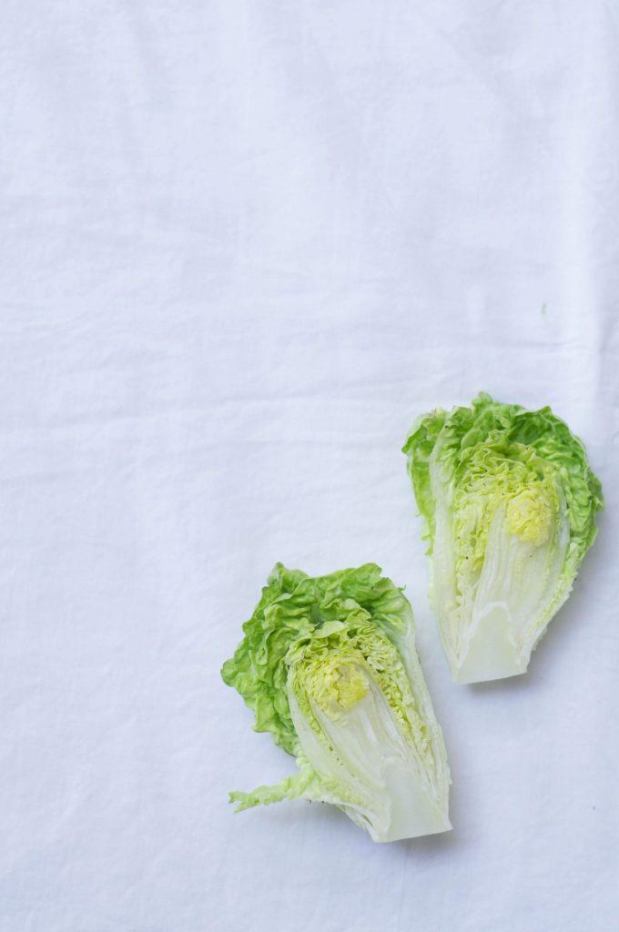 salata copy