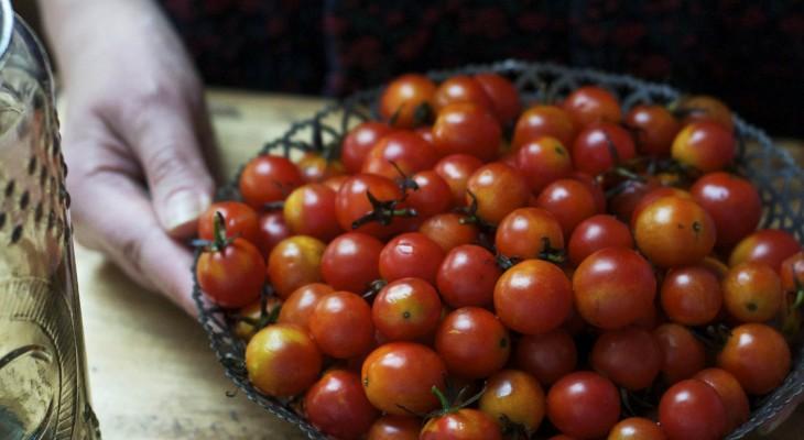 pomidory_koktajlowe_qmamkasze